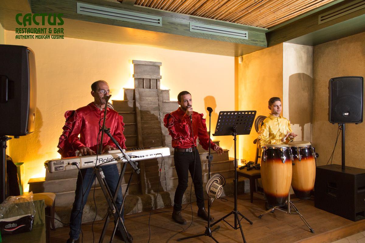 Cactus musician