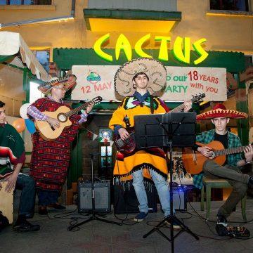 cactus-birthday-20018-11
